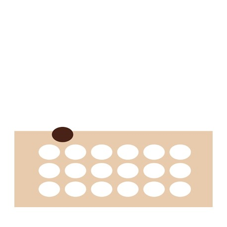 Chablon ovale 4.2 x 3 cm